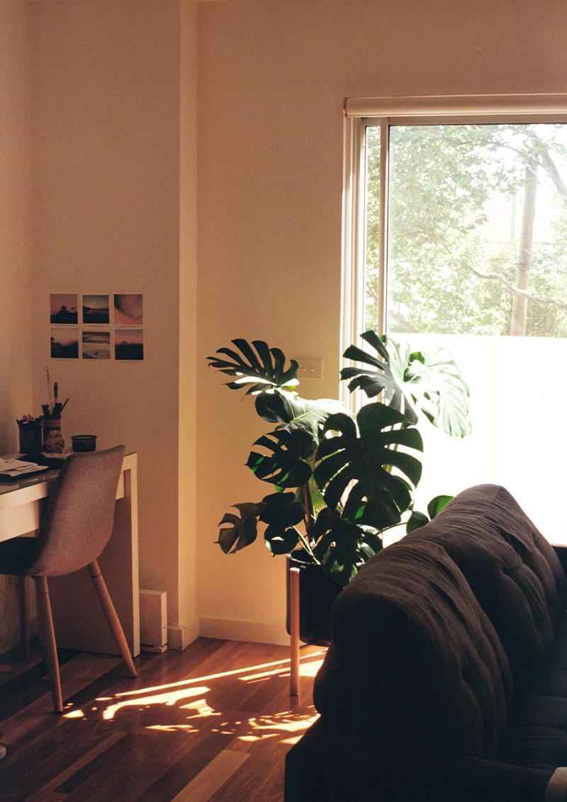 Home Staging Estudio